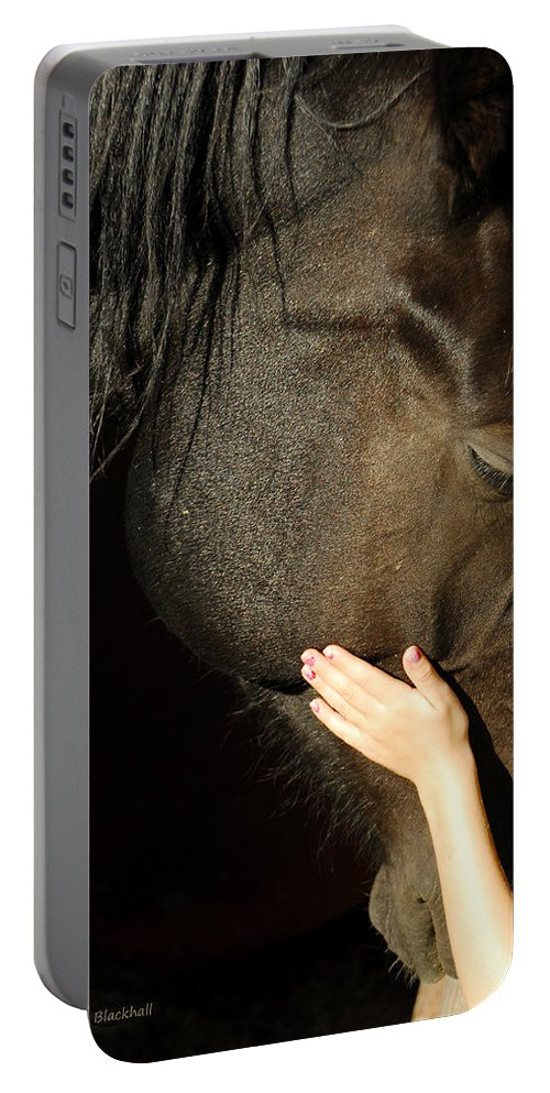Horse Portable Battery Charger featuring the photograph Tenderness by Donna Blackhall
