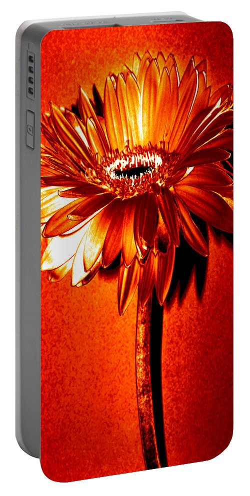 Original Photo Portable Battery Charger featuring the photograph Tequila Sunrise Zinnia by Sherry Allen
