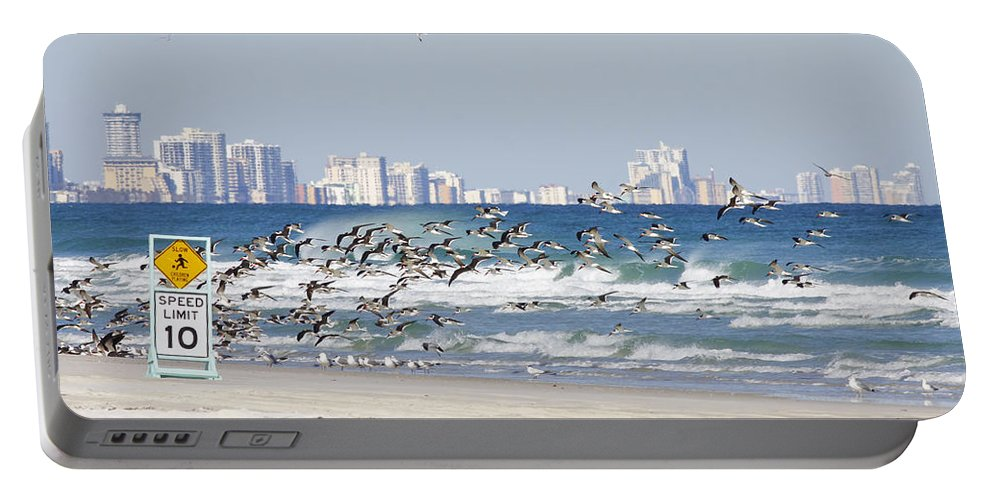 Birds Portable Battery Charger featuring the photograph Terns On The Move by Deborah Benoit