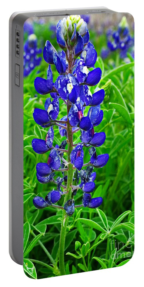 Texas Portable Battery Charger featuring the photograph Texas Blue Bonnet by Gary Richards