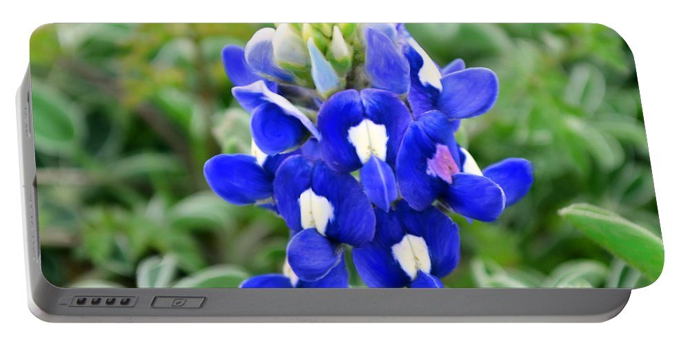 Texas Portable Battery Charger featuring the photograph Texas Bluebonnet by Melinda Baugh