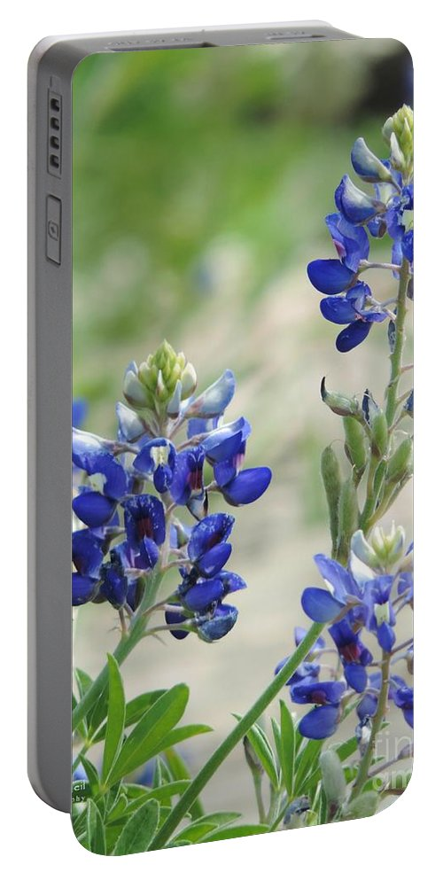 Texas Bluebonnets Portable Battery Charger featuring the photograph Texas Bluebonnets 01 by Robert ONeil