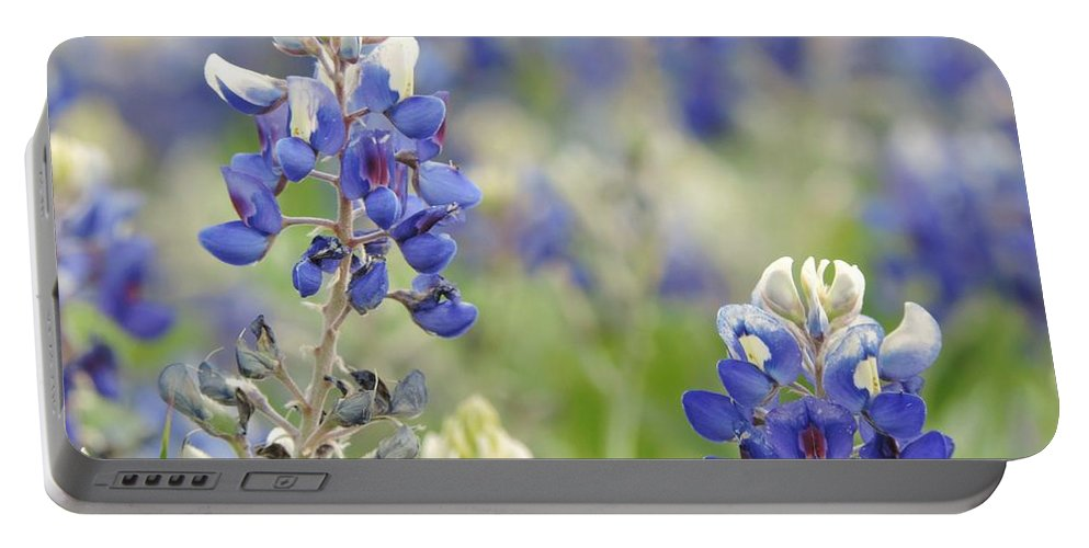 Texas Bluebonnets Portable Battery Charger featuring the photograph Texas Bluebonnets 03 by Robert ONeil
