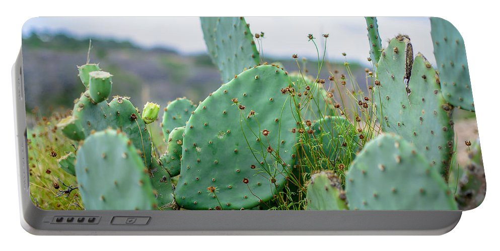 Texas Portable Battery Charger featuring the photograph Texas Cactus by David Morefield
