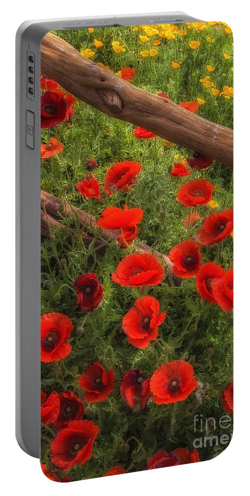 Wildflowers Portable Battery Charger featuring the photograph Texas Hill Country Wildflowers by Priscilla Burgers