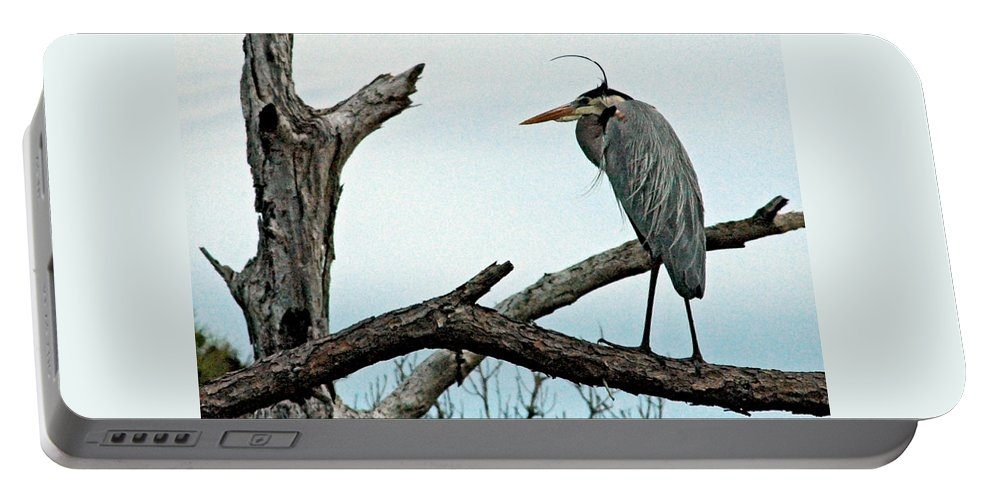 Great Blue Heron Portable Battery Charger featuring the photograph That Wind Is Cold by Norman Johnson