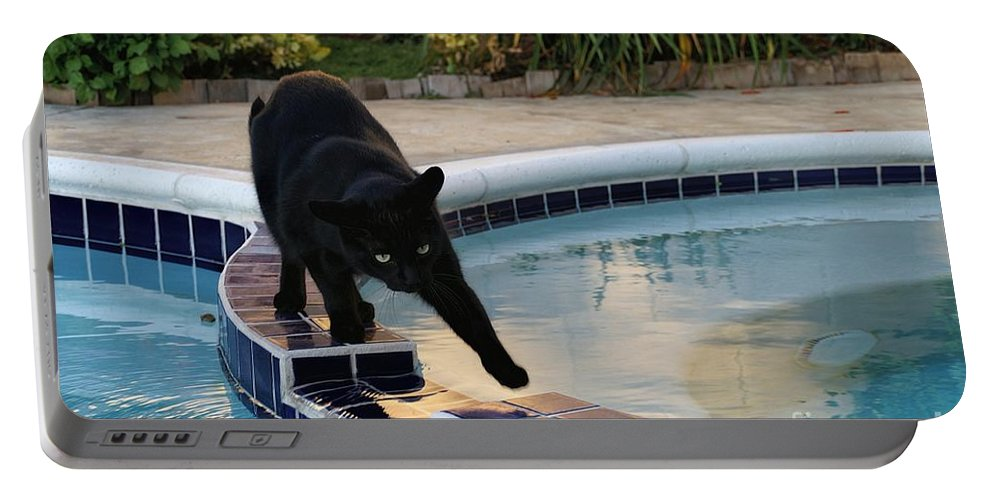 Adventure Portable Battery Charger featuring the photograph The Adventurous Feline by Peggy Hughes
