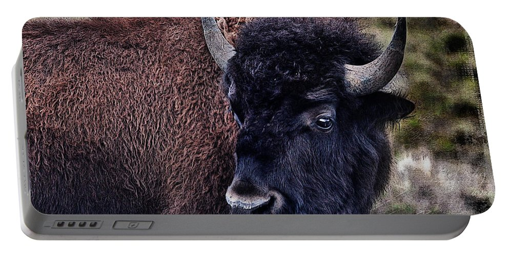 Bison Portable Battery Charger featuring the photograph The American Bison by Janice Pariza
