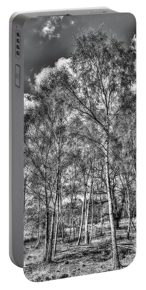 Forest Portable Battery Charger featuring the photograph The Ancient Forest by David Pyatt