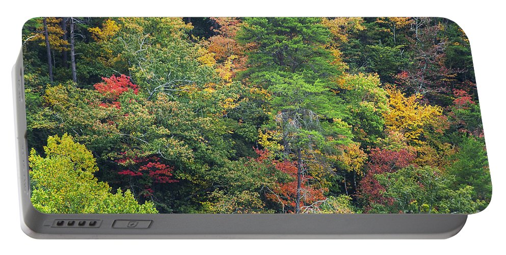 Fall Autumn Color Colors Leaves Leaf Tree Trees Foliage Little River Canyon National Preserve Alabama Preserves Park Parks Landscape Landscapes Portable Battery Charger featuring the photograph The Beauty Of Autumn by Bob Phillips