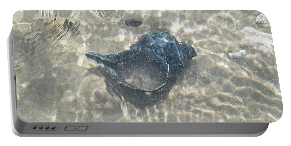Shell Portable Battery Charger featuring the photograph The Black Seashell by Mother Nature