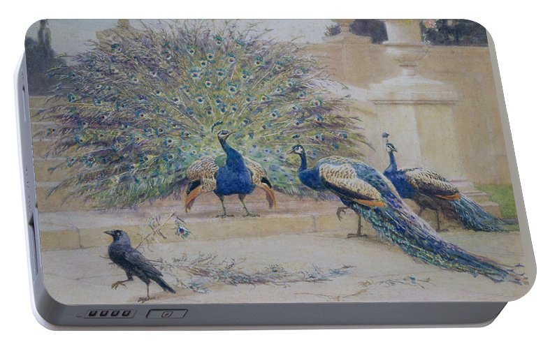 Peacock Portable Battery Charger featuring the painting The Borrowed Plume by John Charles Dollman