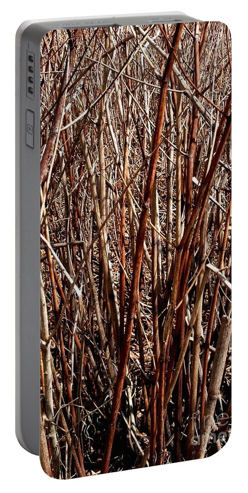 Branches Portable Battery Charger featuring the photograph The Breaks by Joseph Yarbrough