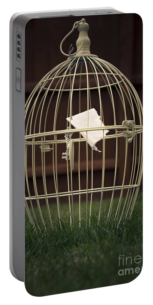 Art Portable Battery Charger featuring the photograph The Cage by Svetlana Sewell