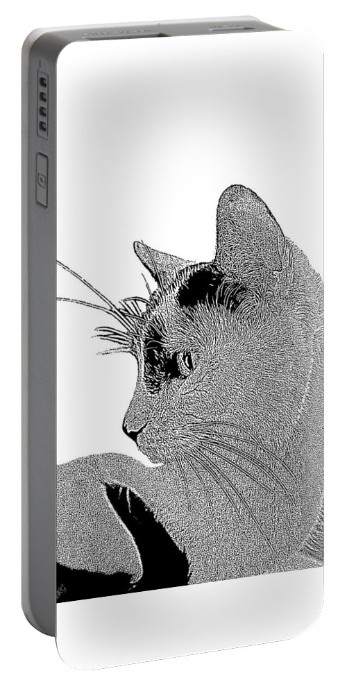 Cat Portable Battery Charger featuring the photograph The Cat by Ben and Raisa Gertsberg