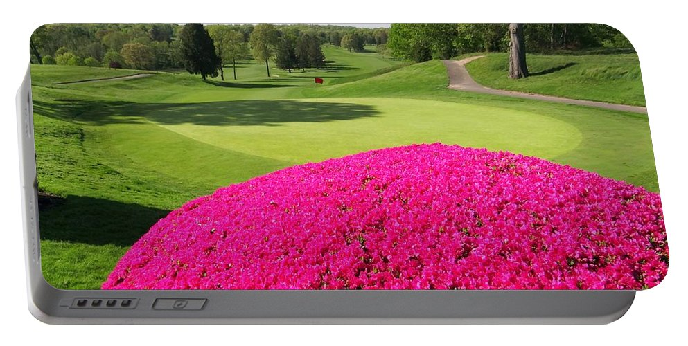 Nature Portable Battery Charger featuring the photograph The Country Club by Ed Weidman