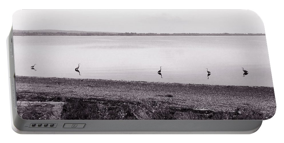 Northern Washington State Portable Battery Charger featuring the photograph The Cranes In Line by Lorraine Devon Wilke