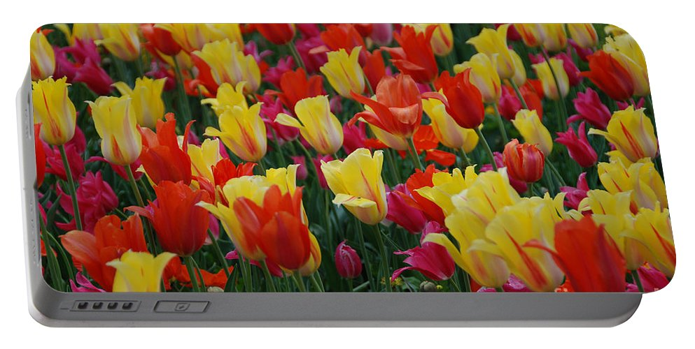 Tulips Portable Battery Charger featuring the photograph The Crowd by Jackie Farnsworth