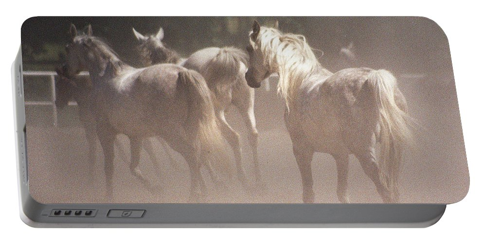 Arabian Horse Portable Battery Charger featuring the photograph The Daughters Of The Desert by Angel Ciesniarska