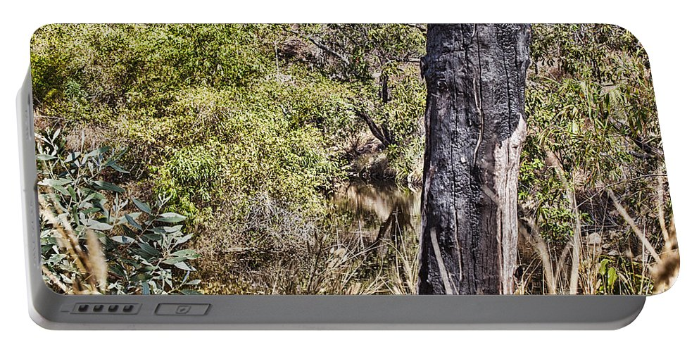 Death Portable Battery Charger featuring the photograph The Death Of A Tree V4 by Douglas Barnard