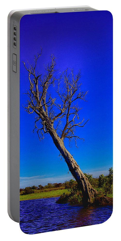 Death Portable Battery Charger featuring the photograph The Death Of A Tree V5 by Douglas Barnard