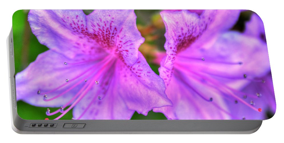 Garden Portable Battery Charger featuring the photograph The Duet V1 by Michael Frank Jr
