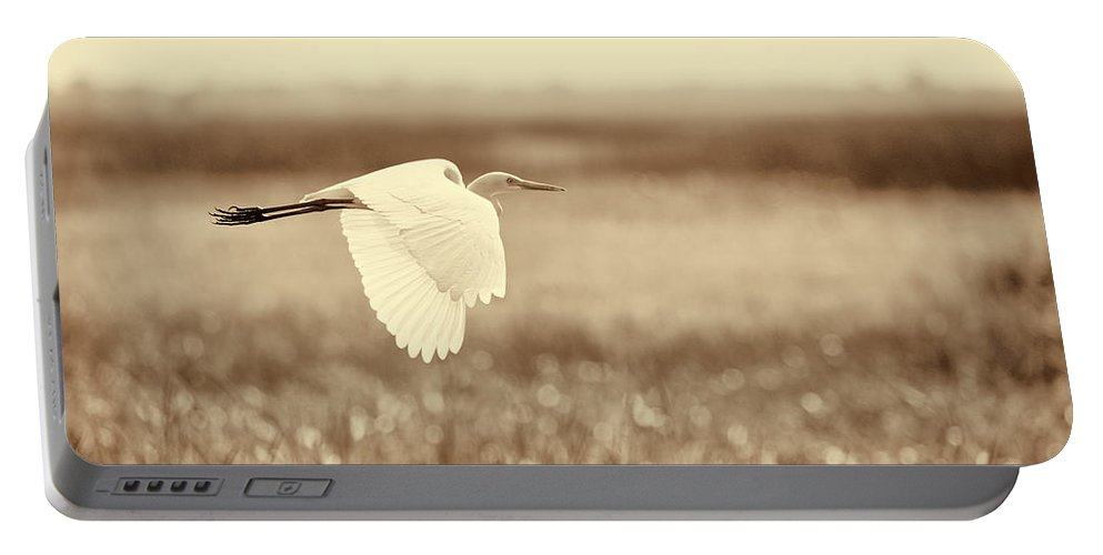 Egret Portable Battery Charger featuring the photograph The Egret In Flight Series V1 by Douglas Barnard