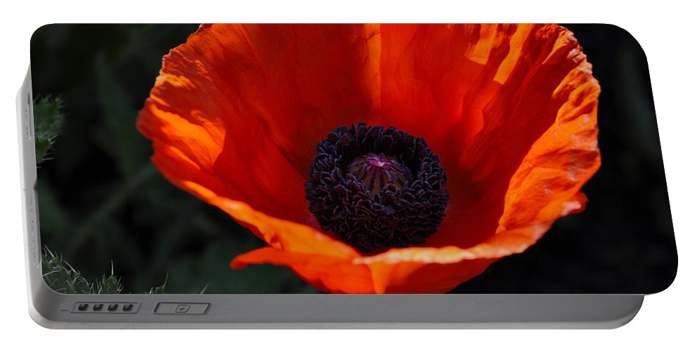 Poppy Portable Battery Charger featuring the digital art The Empess In Red by Jim Brage