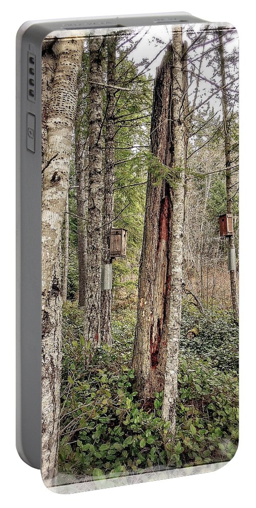 Hamilton Marsh Portable Battery Charger featuring the photograph Birdhouse Neighbourhood Hamilton Marsh by Roxy Hurtubise