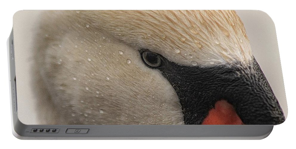 Swan Portable Battery Charger featuring the photograph The Eye Of The Storm by Michael J Samuels