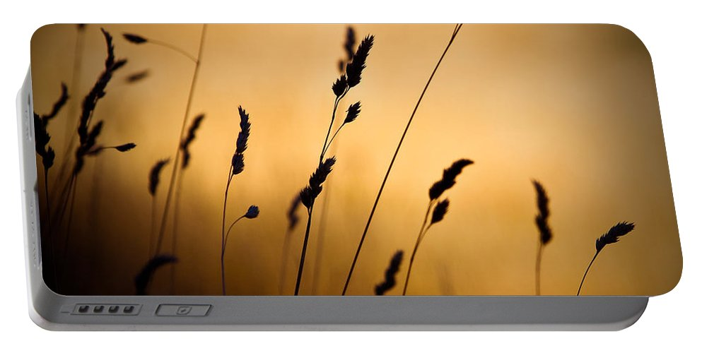 Filed At Sunset Portable Battery Charger featuring the photograph The Field by Dave Bowman