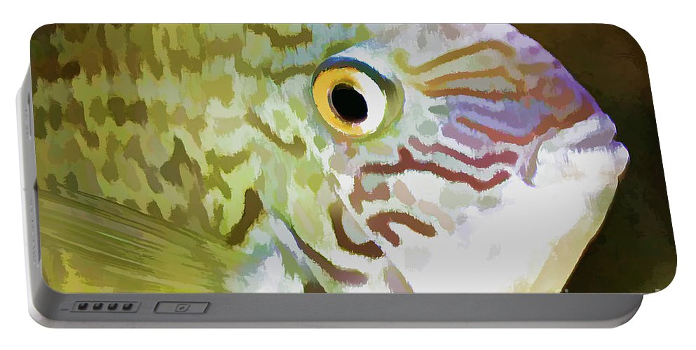 Fish Portable Battery Charger featuring the photograph The Fish by Deborah Benoit