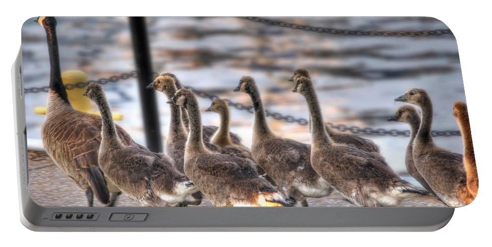 Geese Portable Battery Charger featuring the photograph The Following by Michael Frank Jr