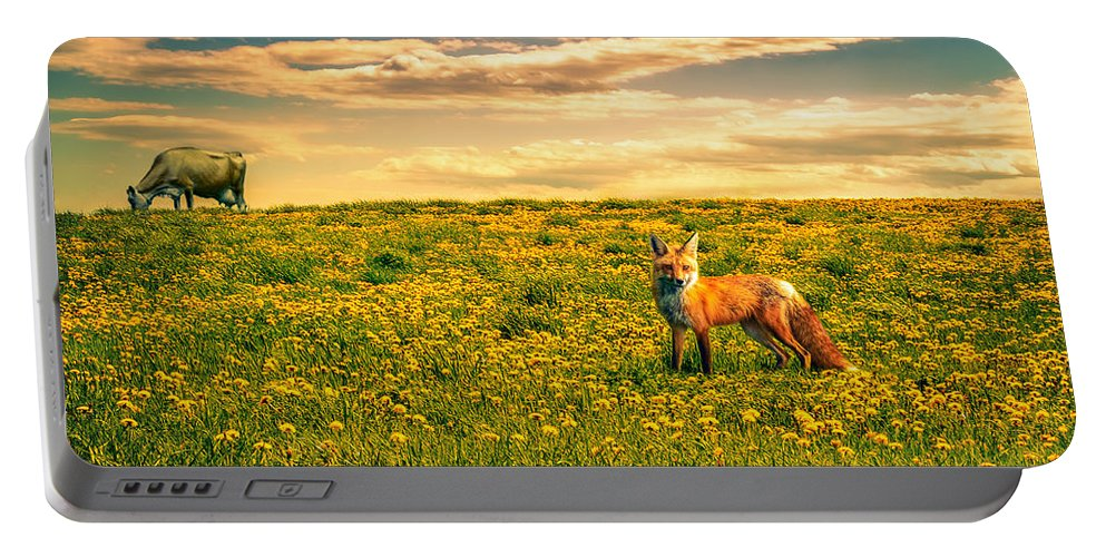 Cows Portable Battery Charger featuring the photograph The Fox And The Cow by Bob Orsillo
