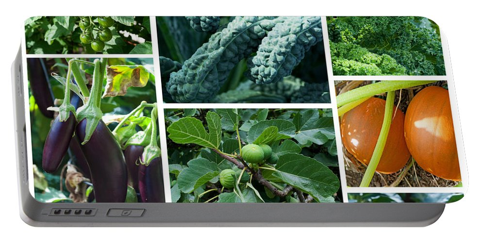 Garden Portable Battery Charger featuring the photograph The Garden by Gwyn Newcombe