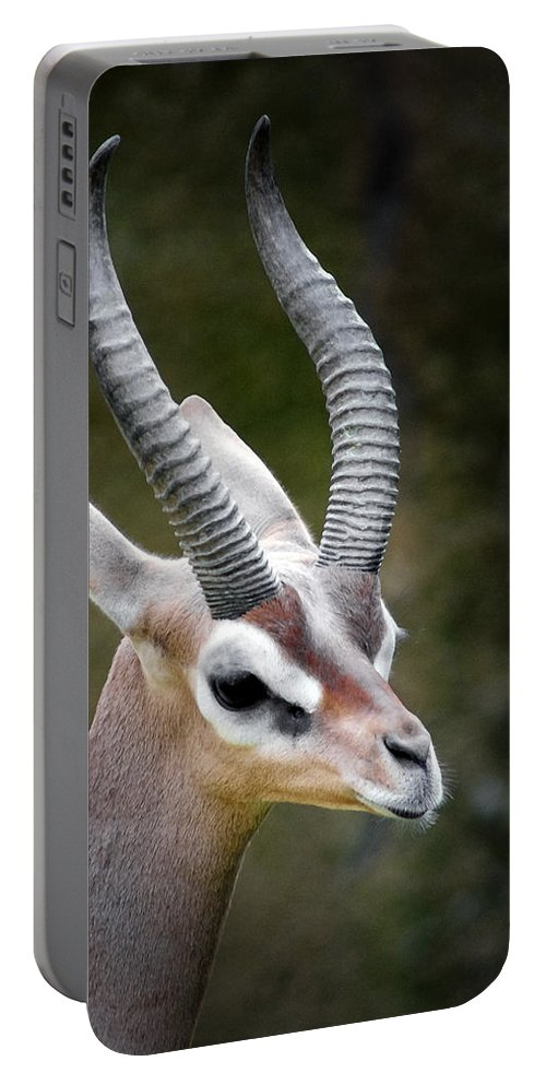 Animals Portable Battery Charger featuring the digital art The Gerenuk by Ernie Echols