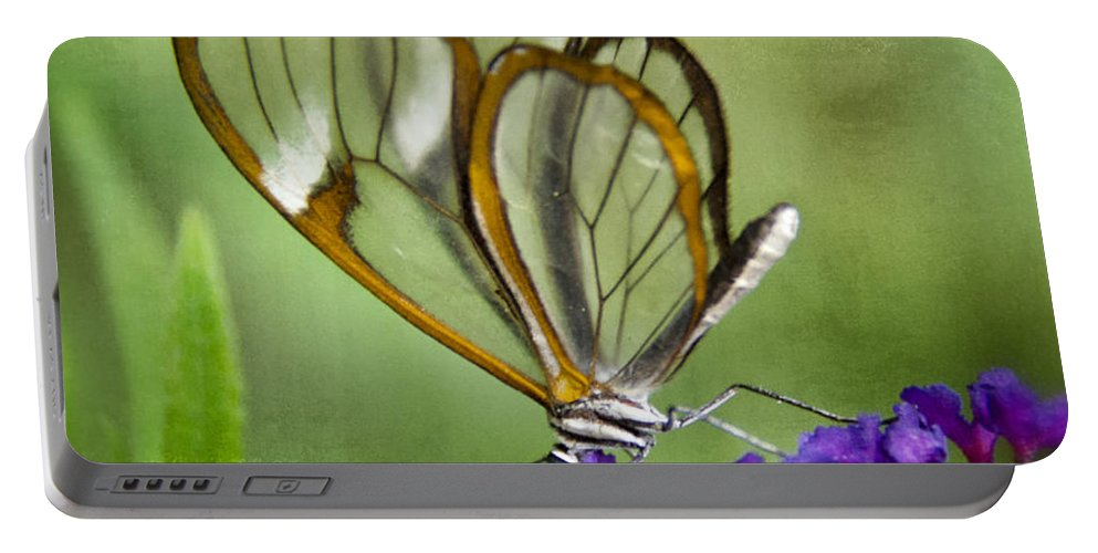 Glasswing Butterfly Portable Battery Charger featuring the photograph The Glasswing by Saija Lehtonen