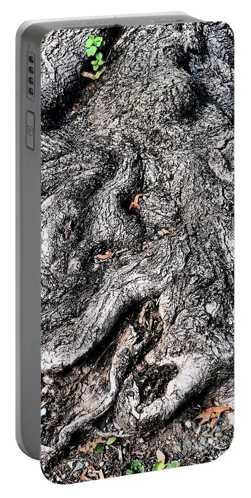 Nature Portable Battery Charger featuring the photograph The Gnarled Old Tree by Miriam Danar