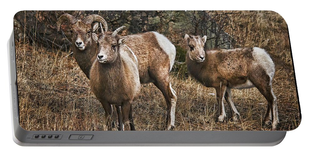 Rocky Mountain Bighorn Sheep Portable Battery Charger featuring the photograph The Good Shepherd's Sheep by Priscilla Burgers