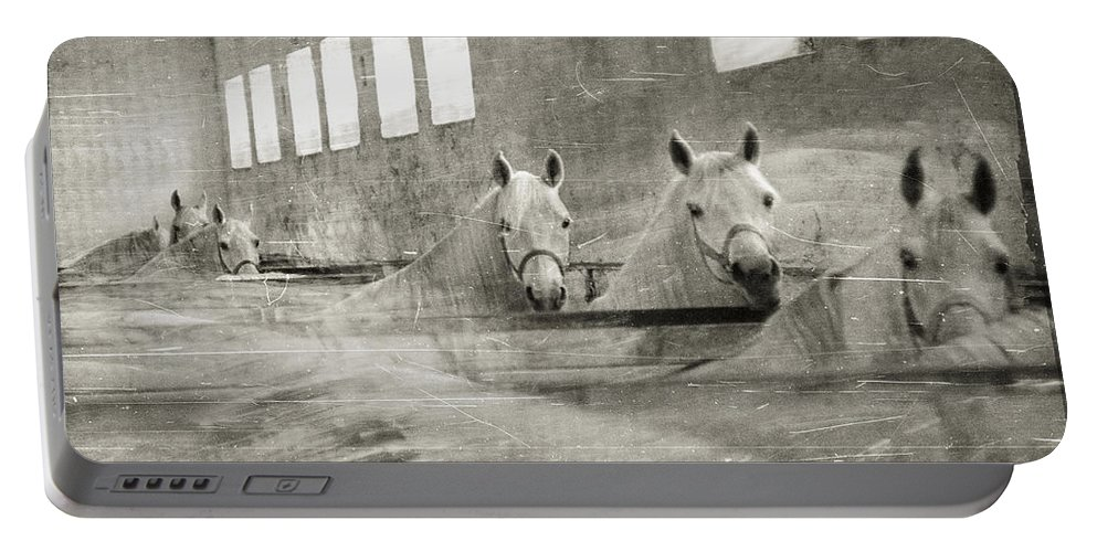 Grey Portable Battery Charger featuring the photograph The Grey Mares by Angel Ciesniarska