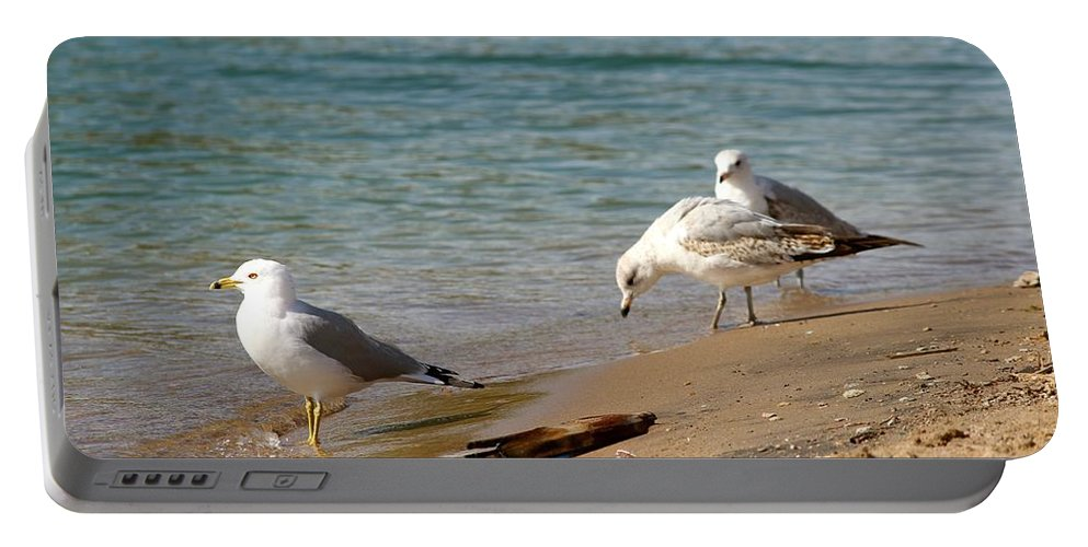 Sea Portable Battery Charger featuring the photograph The Gulls by Tiffany Erdman