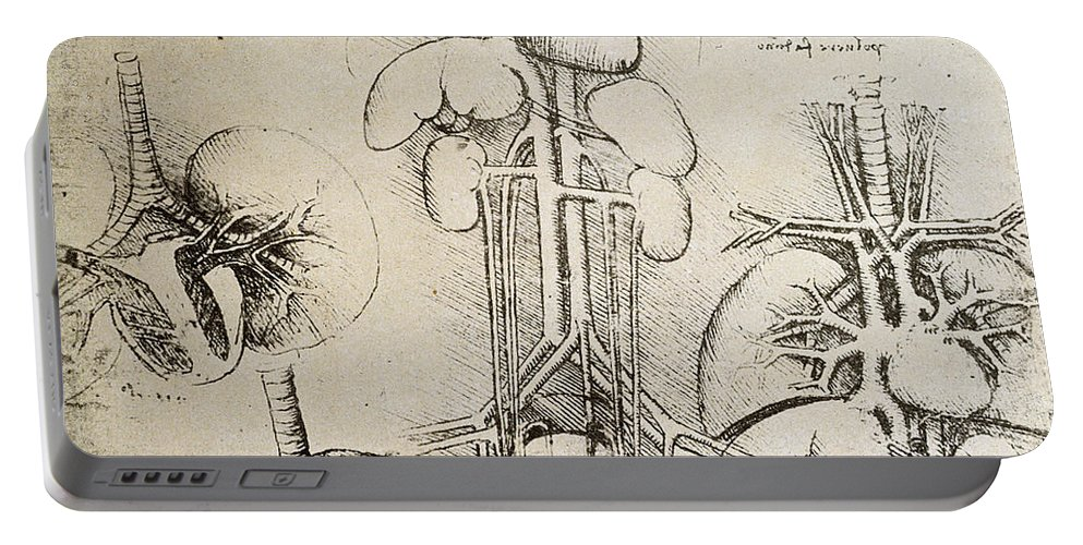 Da Portable Battery Charger featuring the drawing The Heart And The Circulation by Leonardo Da Vinci