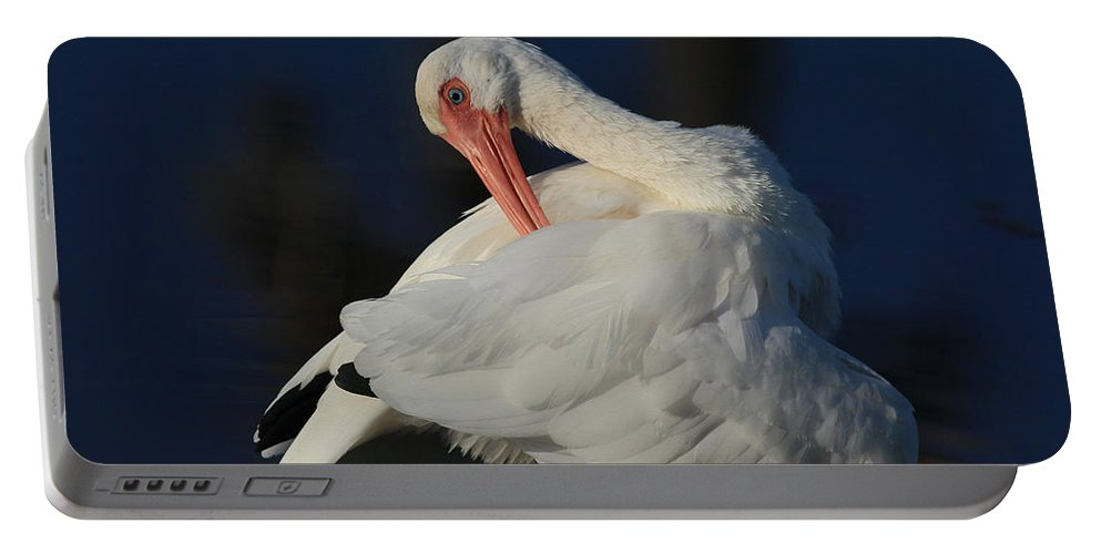 Ibis Portable Battery Charger featuring the photograph The Ibis Preen by Deborah Benoit