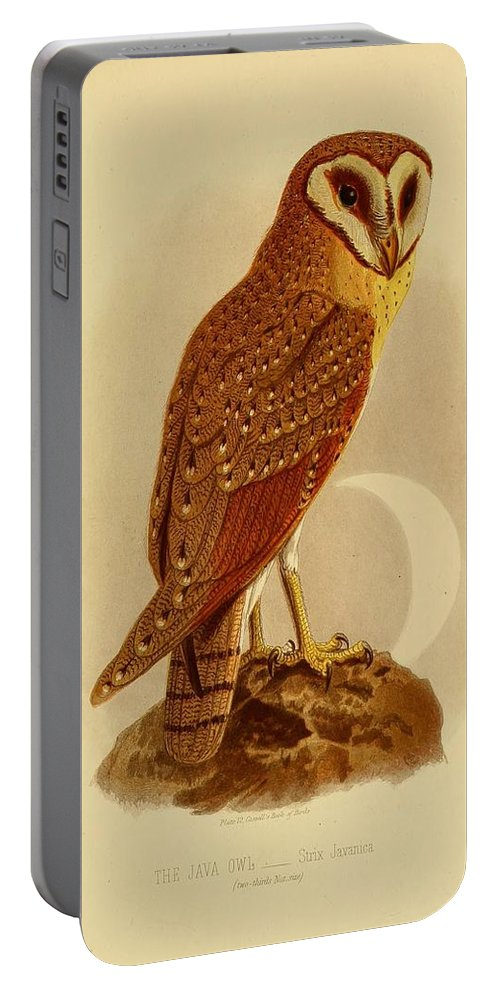 Audubon Portable Battery Charger featuring the painting The Java Owl Cassell by Philip Ralley