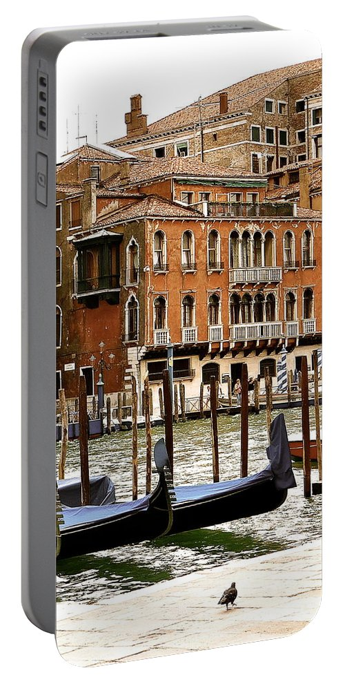 Venice Portable Battery Charger featuring the photograph The Last Pigeon In Venice by Ira Shander