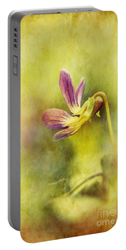 Violet Portable Battery Charger featuring the photograph The Last Violet by Lois Bryan