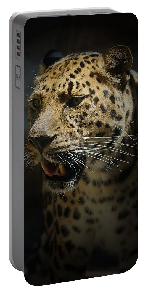 Animals Portable Battery Charger featuring the photograph The Leopard by Ernie Echols