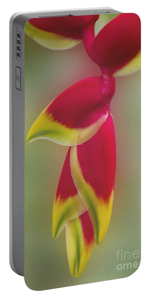 The Life Of The Soul Portable Battery Charger featuring the photograph The Life Of The Soul by Sharon Mau