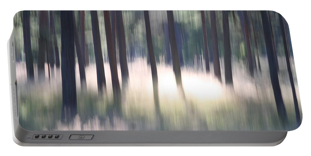 Nature Portable Battery Charger featuring the photograph The Light Of The Forest by Dreamland Media