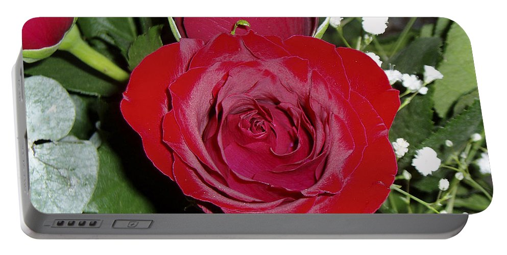 Rose Portable Battery Charger featuring the photograph The Lovely Rose by Verana Stark